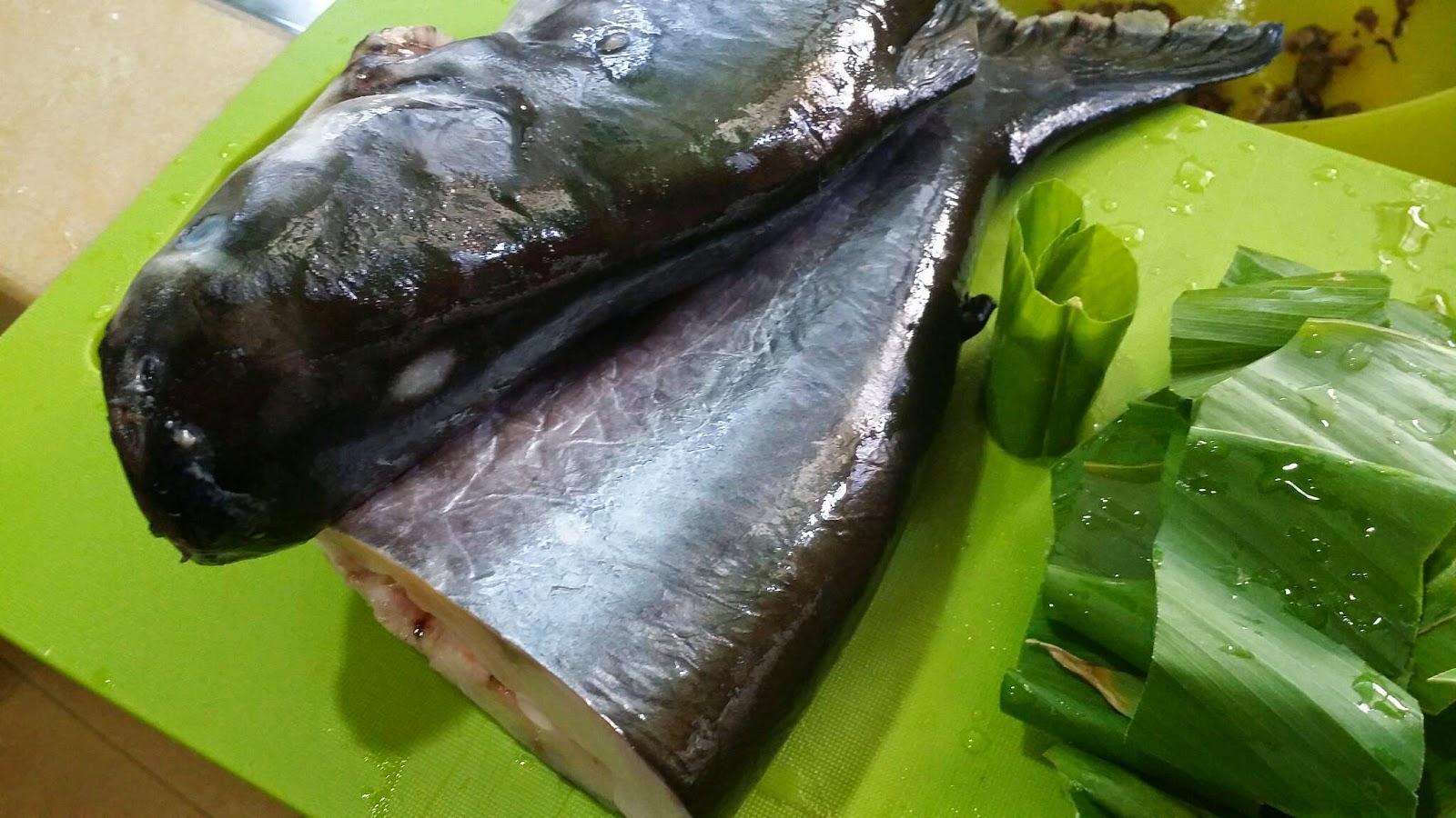 Petua Menghilangkan Hanyir Pada Ikan