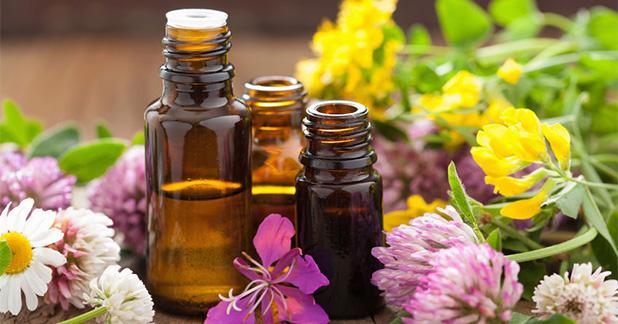 Bunuh Serangga Di Rumah Dengan Hanya Essential Oils?
