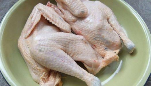 Petua Melembutkan Ayam Tua