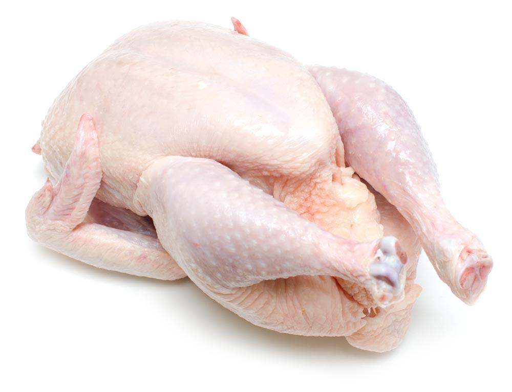 Cara Memilih Ayam Segar